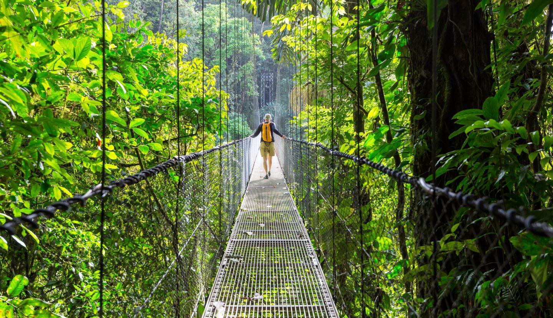 SAFARI COSTA RICA